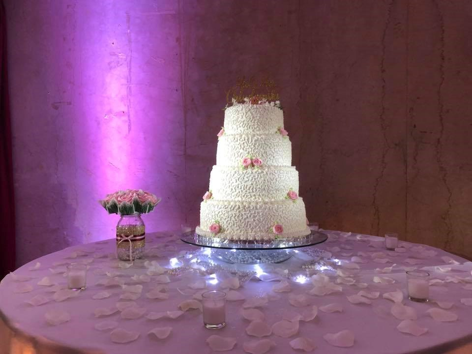 Arpeggio Wedding Entertainment Lighting Pin Spot on Cake