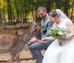 Reception Recap: Southwick Zoo (Alicia & Ross)